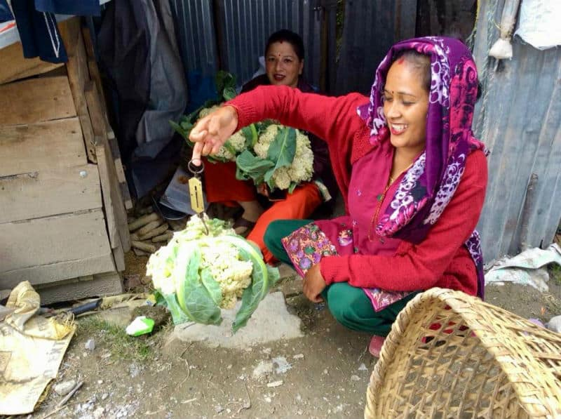 Chance for Nepal - WOMENs COOPERATIVE SOCIETY WCS - Skills 4