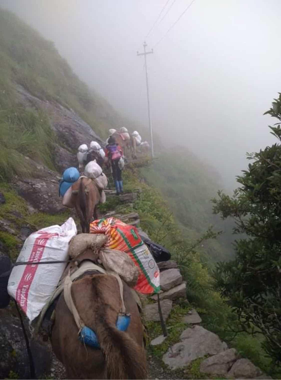 Mountain Heart Nepal (MHN) - Langtang Valley Nepal Lead