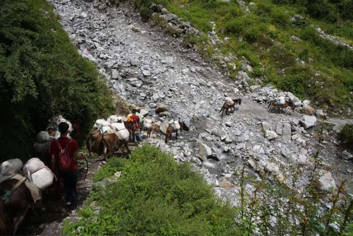 Mountain Heart Nepal (MHN) - Langtang Valley Nepal